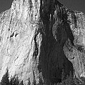 El Cap Face On by Eric Tressler