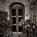 El Sitio Window by Tom Bell