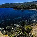 Elba Island - The Path To The Beach - Ph Enrico Pelos by Enrico Pelos