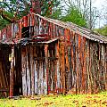 Elderly Shed by Marie Jamieson