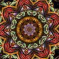 Electric Mandala 2 by Rhonda Barrett