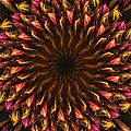 Electric Mandala 4 by Rhonda Barrett