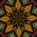 Electric Mandala 7 by Rhonda Barrett