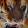 Electric Tiger by Susan Candelario