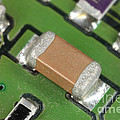 Electronics Board With Lead Solder by Ted Kinsman