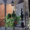 Elegant Entrance by Living Color Photography Lorraine Lynch
