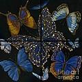 Elena Yakubovich Butterfly 2x2 by Elena Yakubovich