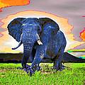 Elephantidae Diurnal by Jimi Bush