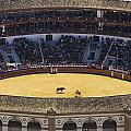 Elevated View Of Bullring by Axiom Photographic