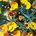 Elfin Child Of Poppies by Cyoakha Grace