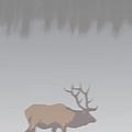 Elk In Winter by Robert Bissett