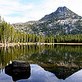 Elkhorn Mountain Reflection by Laurel Talabere