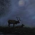 Elks Love by Leslie Allen