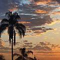 Ellery Sunrise by Joe Schofield