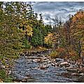 Ellis River Autumn by Richard Bean