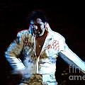 Elvis Is Alive by Darleen Stry