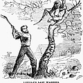 Emancipation Cartoon, 1862 by Granger