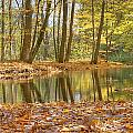 Emerald Creek 2 by Robert Pearson