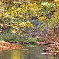 Emerald Creek by Robert Pearson