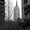 Empire State Building by Mark Gilman