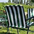 Empty Seats On Garden Lawn by Sami Sarkis