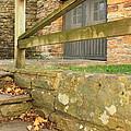 Empty Steps by Bryan Noll