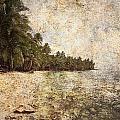 Empty Tropical Beach 2 by Skip Nall