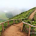 Empty Walking Trail by Gaspar Avila