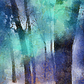 Enchanted Forest. Painting With Light by Jenny Rainbow
