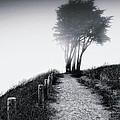 End Of A Road by Laszlo Rekasi