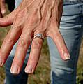 Engaged by LeeAnn McLaneGoetz McLaneGoetzStudioLLCcom