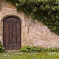 English Door And Ivy by Mike Nellums