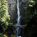 Enjoying Multnomah Falls by David Lee Thompson