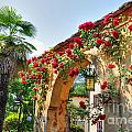 Entrance Arch With Flowers by Mats Silvan