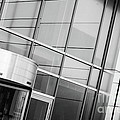 Entrance by Dariusz Gudowicz