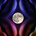 Erotic Moonlight by Steve K