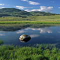 Erratic Boulder And Small Pond In Lamar Valley by Altrendo Nature