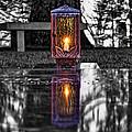 Eternal Reflection by David Sanchez