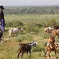 Ethiopia-south Tribal Goat Herder by Robert SORENSEN