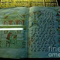 Euthimiev Monastry 51 by Padamvir Singh