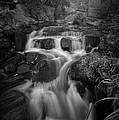 Even Flow 4.1 Bw by Yhun Suarez