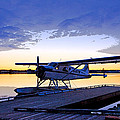 Evening Light On A Dehavilland Beaver- Abstract by Tim Grams