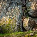Evening Sun Rocks by Lutz Baar