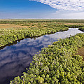 Everglades Waterway by Patrick M Lynch