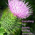 Everything Has Beauty by Ian  MacDonald