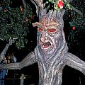 Evil Tree In Oz by Carl Purcell