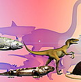 Evolution Of Man by Christian Darkin