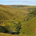 Exmoor's River Barle by Carla Parris