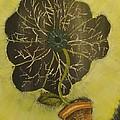 Eye Flower by Terrence McLean