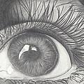 Eye by Kerstin Schroeder